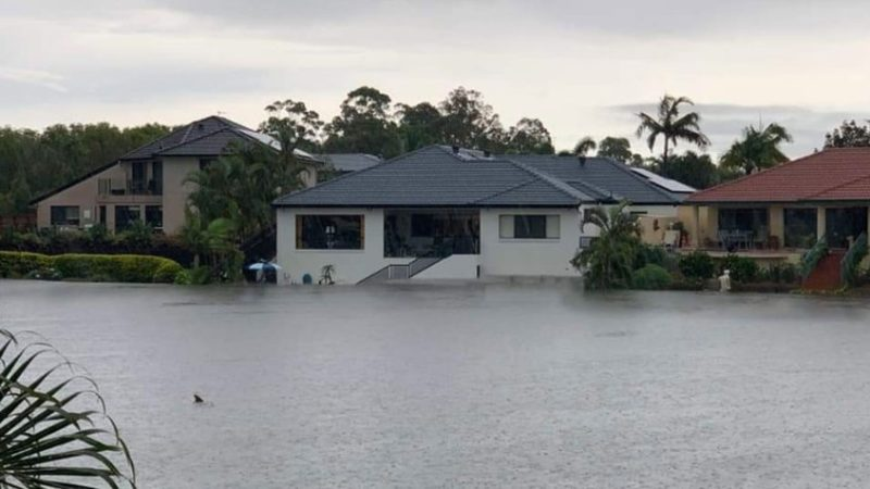 Inundaciones en Australia deja tiburones en las calles