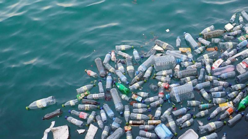 ¿Cómo Afecta el Plástico al Medio Ambiente?