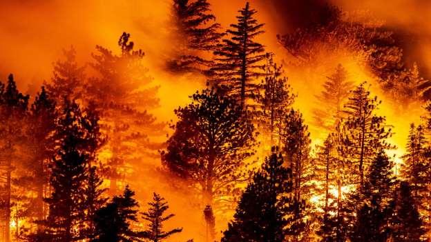 Los incendios de EEUU dejan 29 muertos y miles de personas evacuadas