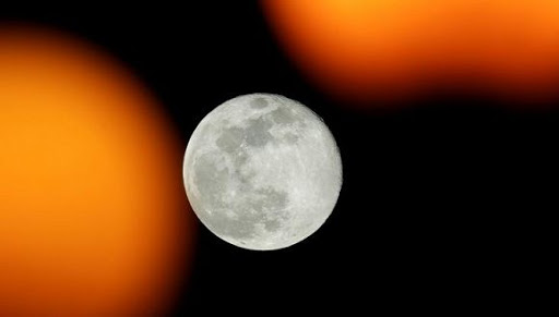 Proponen crear en la Luna un banco de esperma para proteger a la humanidad