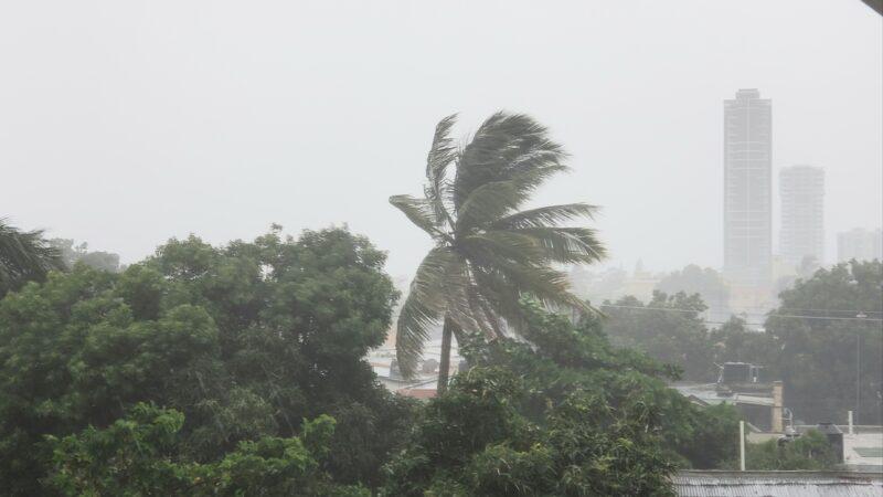 A la espera de la tormenta Elsa, COE declara 15 provincias en alerta