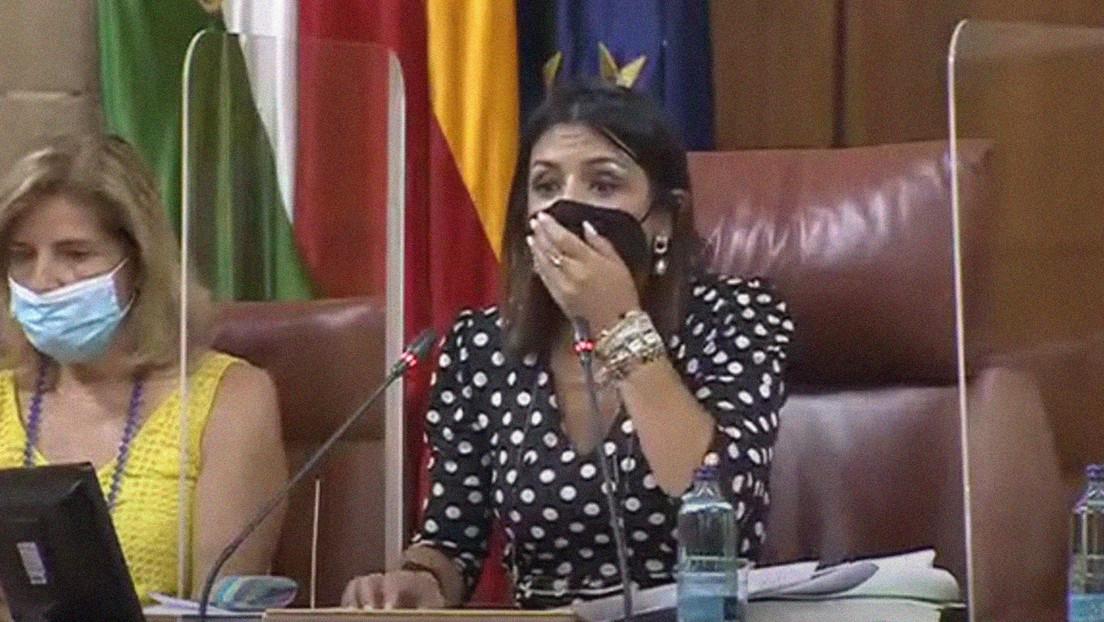 Una rata se cuela en un Parlamento autonómico en España y provoca el pánico entre los presentes (VIDEO)